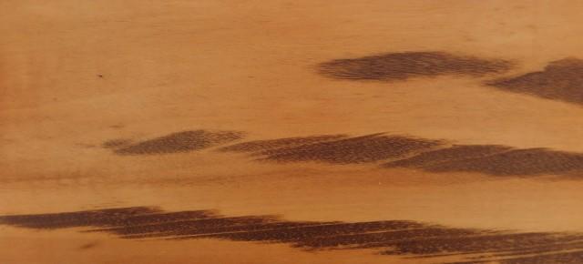 Fraai getekend Muiracatiara heeft onregelmatig voorkomende zwartbruine aders
