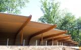 Hollands hout wordt ook gebruikt voor houtconstructies zoals hier in de Apenheul