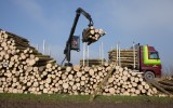 Transport van Hollands Hout
